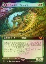 [FOIL] 厄介な害獣、ブレックス/Blex, Vexing Pest (拡張アート版) 【日本語版】 [STX-緑MR]