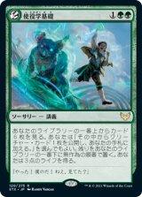 【予約】使役学基礎/Basic Conjuration 【日本語版】 [STX-緑R]