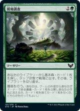 現地調査/Field Trip 【日本語版】 [STX-緑C]