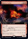 灰のフェニックス/Phoenix of Ash (拡張アート版) 【日本語版】 [THB-赤R]《状態:NM》