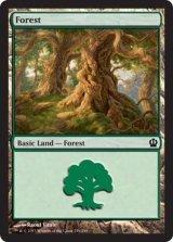 森/Forest No.249 【英語版】 [THS-土地]