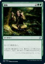調和/Harmonize 【日本語版】 [TSR-緑U]