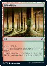 菌類の到達地/Fungal Reaches 【日本語版】 [TSR-土地U]