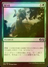 [FOIL] 強大化/Become Immense 【日本語版】 [UMA-緑U]