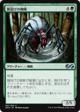 棘投げの蜘蛛/Stingerfling Spider 【日本語版】 [UMA-緑U]