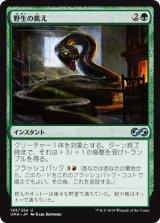野生の飢え/Wild Hunger 【日本語版】 [UMA-緑U]