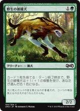 野生の雑種犬/Wild Mongrel 【日本語版】 [UMA-緑C]