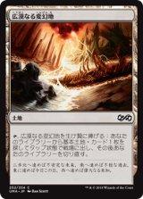 広漠なる変幻地/Terramorphic Expanse 【日本語版】 [UMA-土地C]