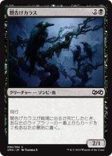 闇告げカラス/Crow of Dark Tidings 【日本語版】 [UMA-黒C]