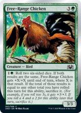 Free-Range Chicken 【英語版】 [UND-緑C]《状態:NM》