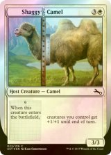 [FOIL] Shaggy|Camel 【英語版】 [UST-白C]