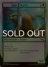 [FOIL] Eager|Beaver 【英語版】 [UST-緑C]