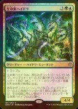 [FOIL] 生命素ハイドラ/Bioessence Hydra 【日本語版】 [WAR-金R]
