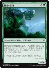 開花の巨体/Bloom Hulk 【日本語版】  [WAR-緑C]《状態:NM》