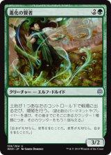 進化の賢者/Evolution Sage 【日本語版】  [WAR-緑U]《状態:NM》