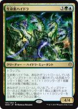 生命素ハイドラ/Bioessence Hydra 【日本語版】  [WAR-金R]