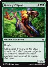 葉を食む鞭尾/Grazing Whiptail 【英語版】 [XLN-緑C]