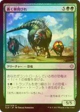 [FOIL] 轟く棘背びれ/Thundering Spineback 【日本語版】 [XLN-緑U]
