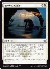イクサランの束縛/Ixalan's Binding 【日本語版】 [XLN-白U]