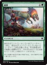 襲撃/Pounce 【日本語版】 [XLN-緑C]