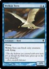 天空のアジサシ/Welkin Tern 【英語版】 [ZEN-青C]