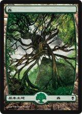 森/Forest No.249 【日本語版】 [ZEN-土地]《状態:NM》