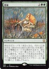 豊穣/Abundance 【日本語版】 [ZNC-緑R]