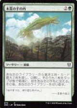 木霊の手の内/Kodama's Reach 【日本語版】 [ZNC-緑C]