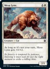 台地のオオヤマネコ/Mesa Lynx 【英語版】 [ZNR-白C]
