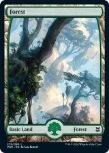 森/Forest No.278 【英語版】 [ZNR-土地C]