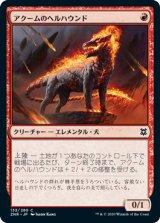 アクームのヘルハウンド/Akoum Hellhound 【日本語版】 [ZNR-赤C]《状態:NM》
