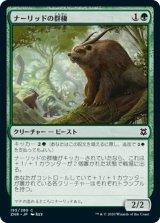 【予約】ナーリッドの群棲/Gnarlid Colony 【日本語版】 [ZNR-緑C]