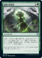 乱動の再成長/Roiling Regrowth 【日本語版】 [ZNR-緑U]《状態:NM》