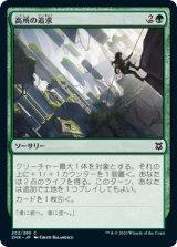 【予約】高所の追求/Scale the Heights 【日本語版】 [ZNR-緑C]