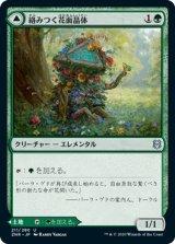 絡みつく花面晶体/Tangled Florahedron 【日本語版】 [ZNR-緑U]《状態:NM》