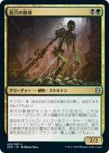 苔穴の骸骨/Moss-Pit Skeleton 【日本語版】 [ZNR-金U]《状態:NM》