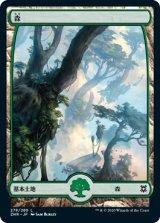 森/Forest No.278 【日本語版】 [ZNR-土地C]《状態:NM》