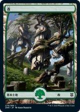 森/Forest No.279 【日本語版】 [ZNR-土地C]《状態:NM》