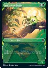 【予約】カザンドゥの蜜壺虫/Kazandu Nectarpot (ショーケース版) 【日本語版】 [ZNR-緑C]