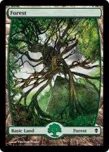 森/Forest No.249 【英語版】 [ZEN-土地]《状態:NM》